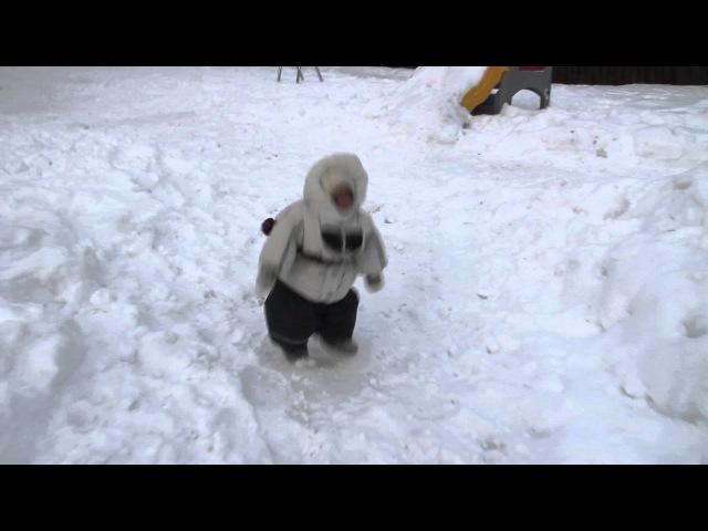 Яванская макака Феденька на зимней прогулке с собаками