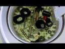 Мойка деталей катушки Shimano Sephia C 3000S