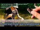 Каменистый щитомордник. Змеи России