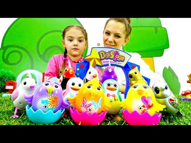 Видео с игрушками Идём в Зоомагазин Гулливер Интерактивные игрушки Поющие птички Digibirds