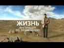 Документальный фильм Владмира Герасичева Жизнь Инструкция по применению