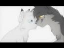 Коты воители Белка и Ежевика Синяя звезда и жёлудь Белогривка и остролап Шёпот в темноте КВ-ТОП Топовая Звезда