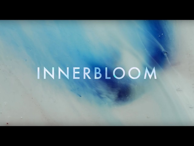 RÜFÜS DU SOL ●● Innerbloom Official Video