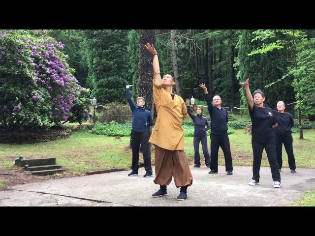 易筋經 · Yi Jin Jing Muscle Tendon Change Classic Qi Gong