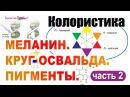 Колористика ч 2 Меланин Круг Освальда Пигменты Первичные цвета Как формирует