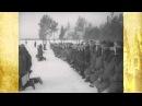 Клятва Гвардейцев. Вручение гвардейского знамени авиационному полку. Февраль 1943 г. Новости дня