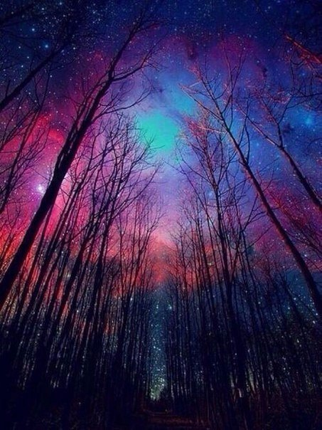 Чудесные цвета неба????