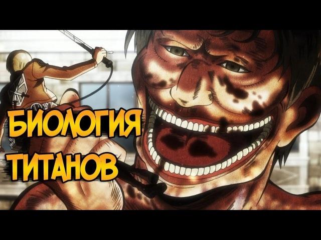 Титаны из аниме Атака Титанов Вторжение Гигантов биология виды способности