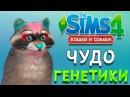 ЧУДО ГЕНЕТИКИ ЕНОТ | The Sims 4 Кошки и Собаки