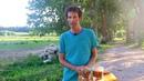 Tous les bénéfices à faire tremper vos amandes, noix, graines, céréales...etc - biovie.fr