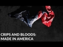 Crips And Bloods: Made In America (2008) RUS русский перевод _ STREET GANGS IN LOS ANGELES