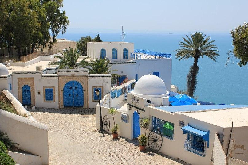 Самые интересные достопримечательности Туниса, изображение №2