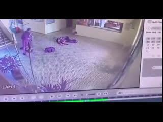 Двое бывших учеников ворвались в школу с оружием и начали бойню.