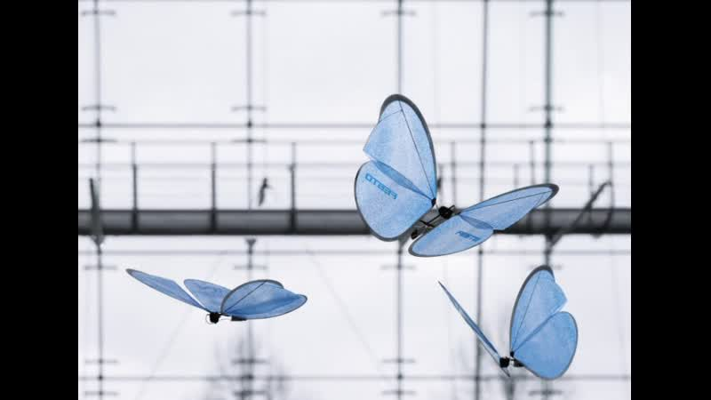 Bio Inspired Robots that Mimic Nature
