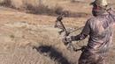3 YARD ARCHERY MULE DEER SHOT