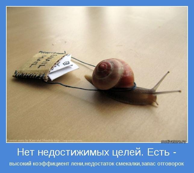 ПОСТ КОНСТРУКТОР, изображение №2