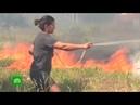 Амазония в огне в Бразилии создали кризисный штаб по борьбе с лесными пожарами
