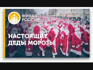 Живая Россия - Настоящие Деды морозы