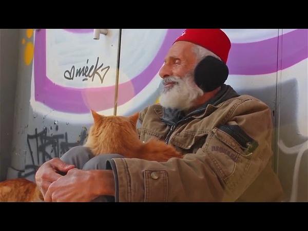 Лидерский вояж Armelle Турция Стамбул Путешествуй с Армель