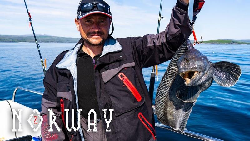 Рыбалка в Норвегии ч.2 Настоящий отдых для мужика Зубатка в кляре на воке.