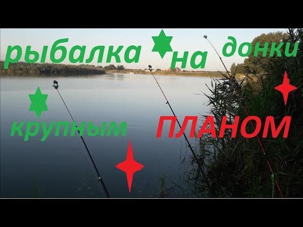 РЫБАЛКА 2019 Бешеный клёв карася и леща Ловля рыбы на донку