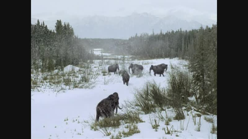 BBC Прогулки с чудовищами 2001 6 Серия Путешествие мамонта
