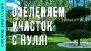 Озеленяем участок с Нуля! Ландшафтный дизайн. Садовый центр Ева