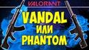 VANDAL или PHANTOM в VALORANT