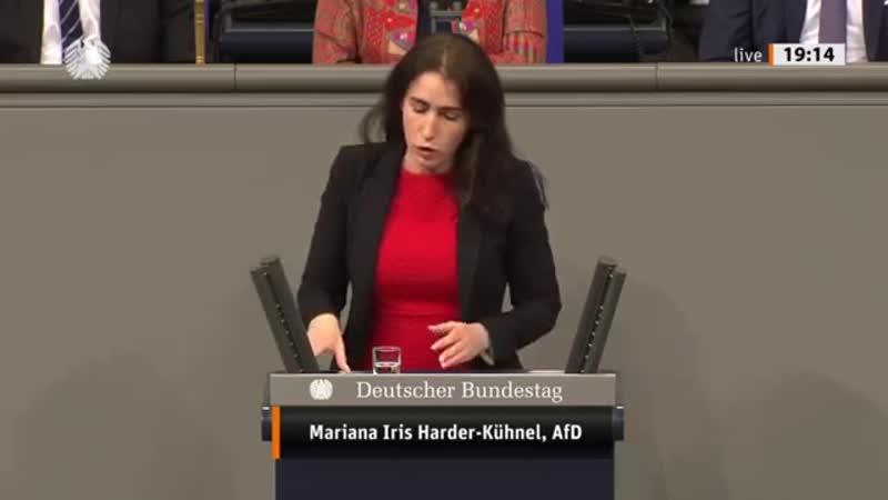 Bundestag. Tumult Geschrei (Thema Gewalt gegen Frauen) Mariana Harder-Kühnel AfD 12.12.2019