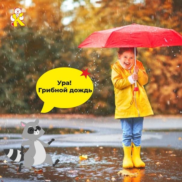 правда, картинки 6 августа день дождя пирожки разными начинками