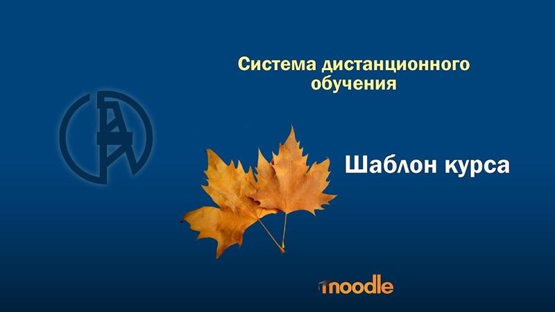 Шаблон курса в СДО УГНТУ moodle
