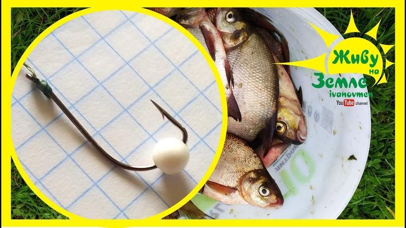 Рыба ловится на пенопласт Рыбалка на донки Крокодил