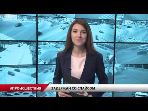 В Подмосковье задержали рязанца со спайсом