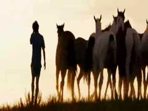 Running With Horses - Into The Wild