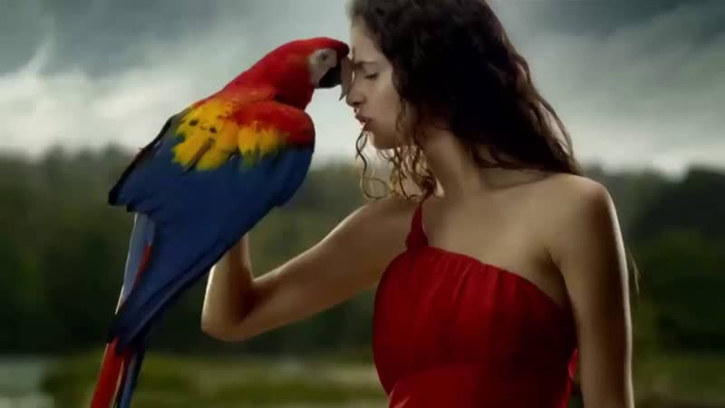 Thomas Bergersen Colors of Love EXTENDED Version by Kiko10061980