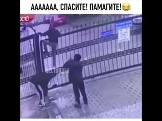 ААА, спасите помогите)