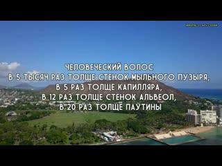 Интересное видео №114 - Отец Собрал 10 МЛН.РУБ на Лечение Сына и.ПОТРАТИЛ ИХ