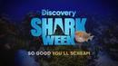So Good You'll Scream: Shark Week Starts Sunday, July 28!