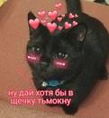 Фотоальбом Дианы Михайловой