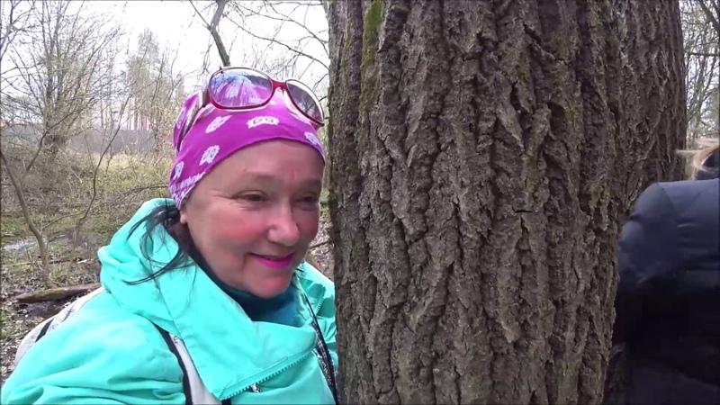 77 С людьми обниматься нельзя идем в лес обнимать деревья Церковь в нашей деревне