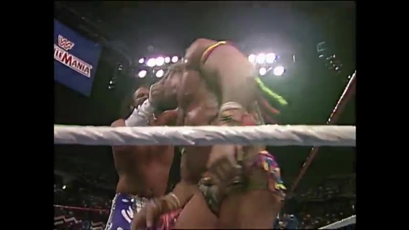 WrestleMania VII (March 24, 1991)