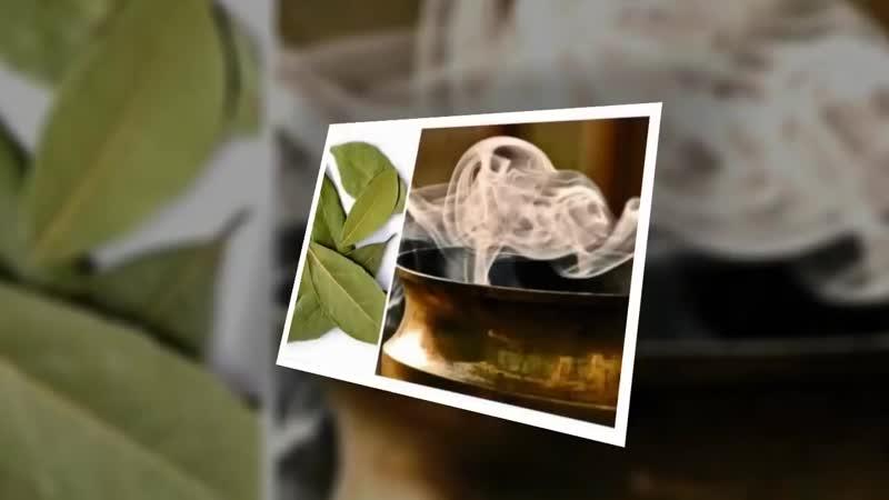 ★ Вот зачем надо поджигать лавровый лист в вашем доме Вы будете приятно удивлены