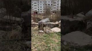 Активист ЛДПР и депутат ГорСовета Елена Емельянова о наболевшей теме м она ГМП