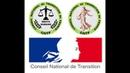 La révolte française présentée aux Nations CNTF