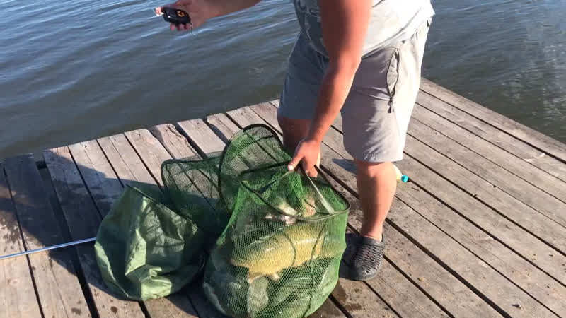 Отчёт рыбалки 24 06 19 на Гинезисе