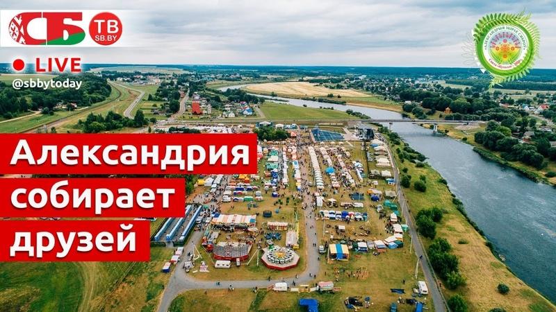Александрия собирает друзей стрим экскурсия по фестивалю ПРЯМОЙ ЭФИР