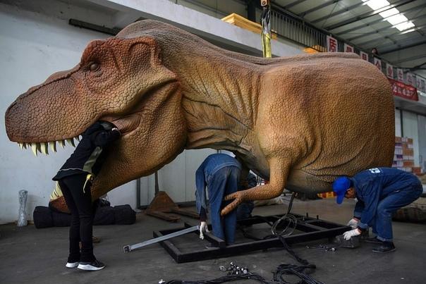 Рабочие чинят динозавров-аниматроников (с их помощью создают спецэффекты в фильмах