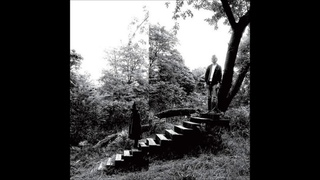 2009 - Timber Timbre - Timber Timbre FULL ALBUM