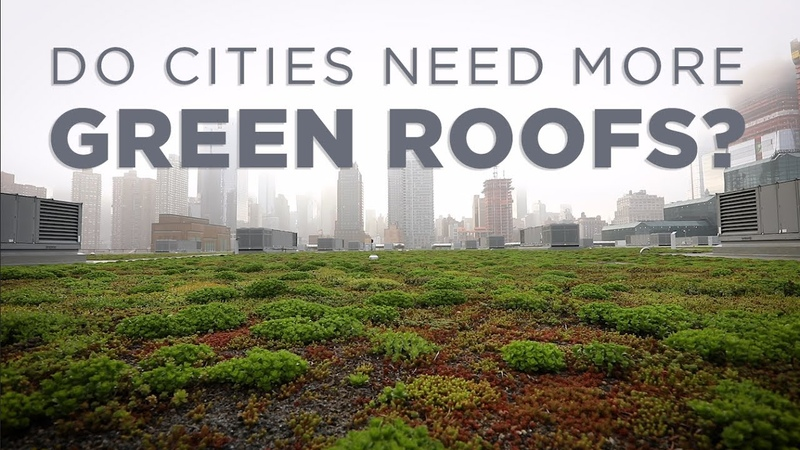 How Green Roofs Can Help Cities | NPR