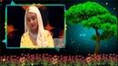 Göknur Öldürün Ne Olur Duygusal Türkülerimiz Canlı Tv Kaydı YENİİ